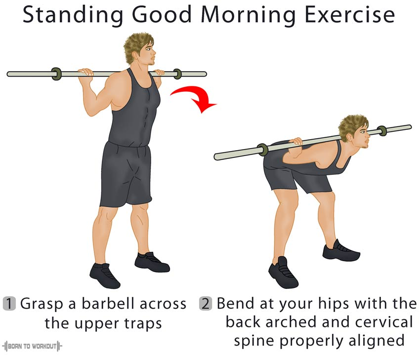 How To Do The Good Morning Exercise